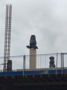 UoB building site owl